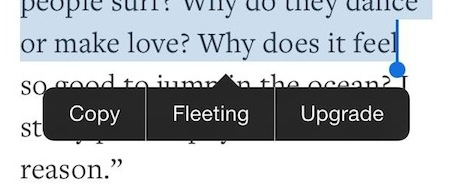 Fleeting tweak helps you speed-read any text on your iPhone