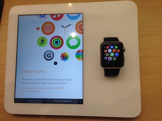 Apple watch demo terminal