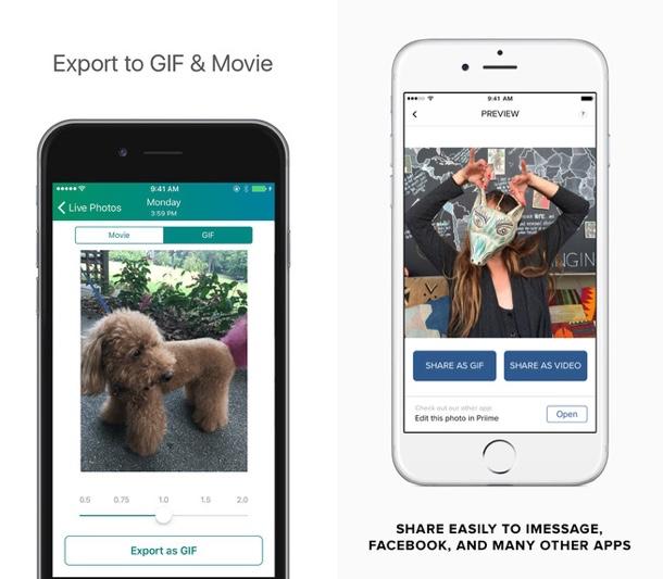 Live GIF - Lively app