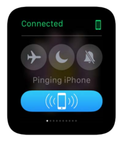 Apple Watch ping screen