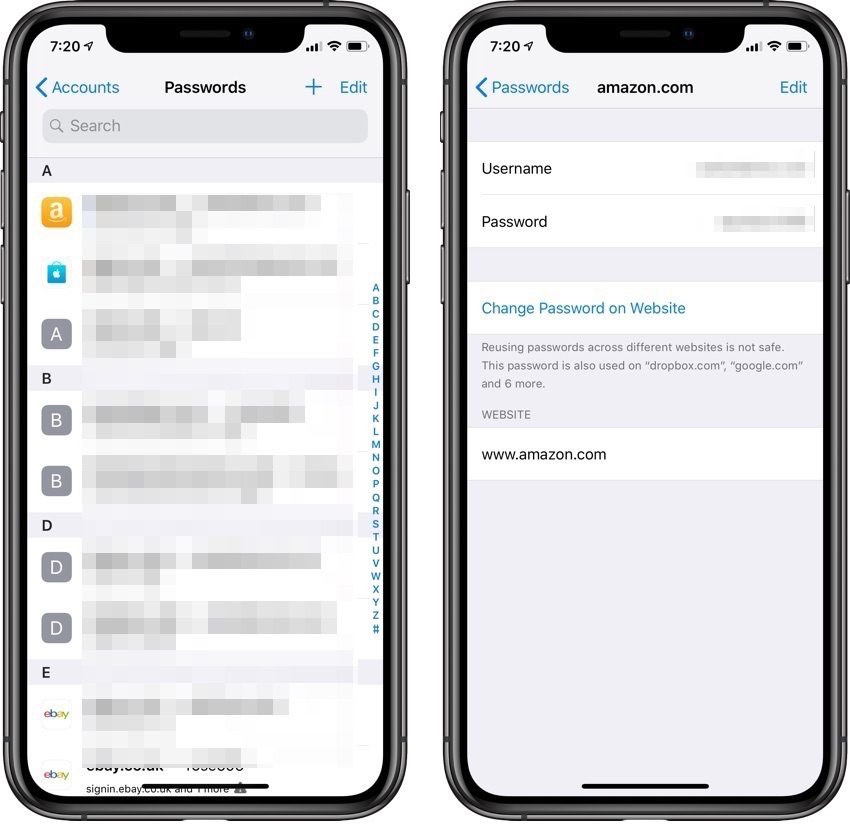 Passwords iPhone keychain