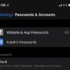 Passwords & Accounts Bug iOS 13
