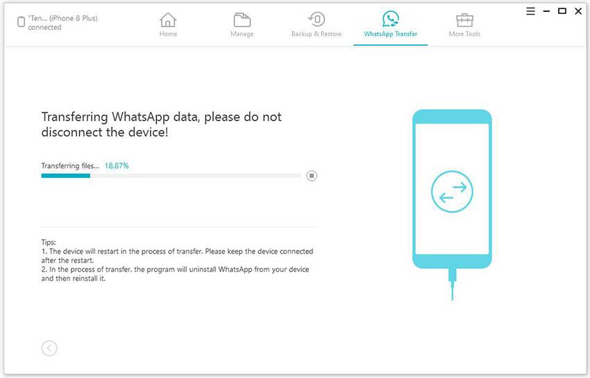 WhatsApp Transfer feature