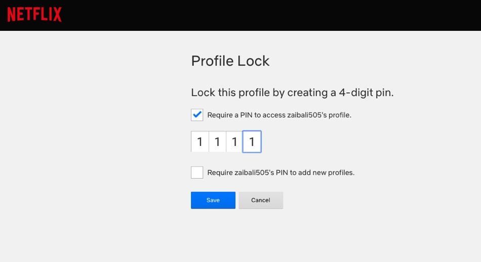 Netflix passcode screen