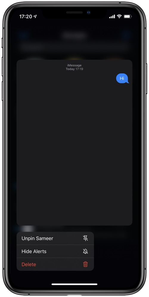 Messages app pinned conversations