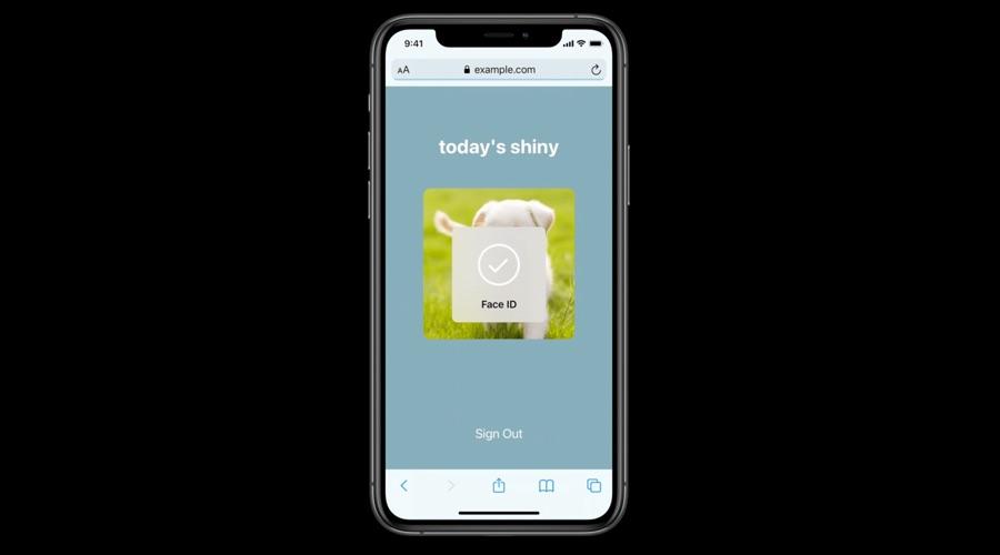 iOS 14 Safari Face ID Login