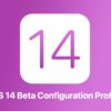 iOS 14 beta configuration profile