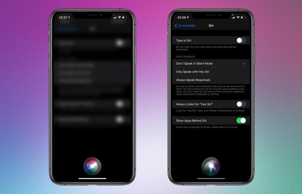 Siri Interface iOS 14