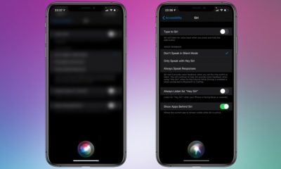 Siri Interface iOS 14