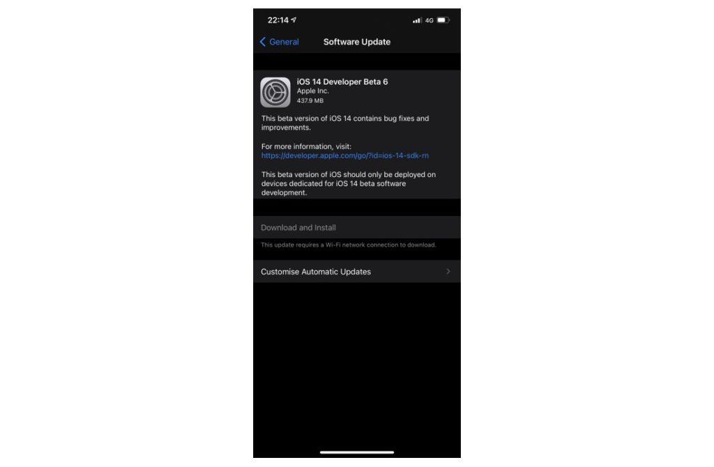 iOS 14 developer beta 6
